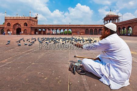 muslim, man, feeding, pigeons, in, india - 28471360