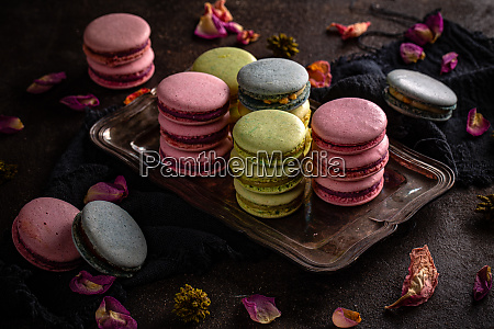 macaron cookies in verschiedenen farben