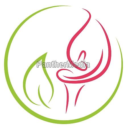 zantedeschia pflanze calla blume logo symbol