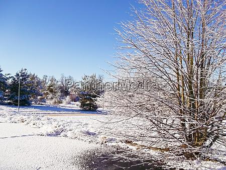 der winter in der uckermark