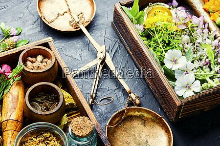 healing herbs in box