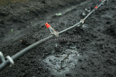 bewässerungssystem, aus, nächster, nähe - 28593598