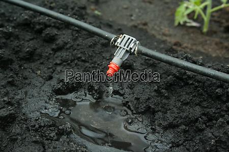 irrigation, system, close, up - 28593594