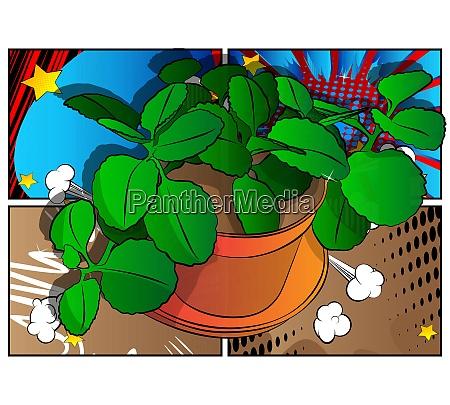 vektor illustriert gruene pflanze in einem