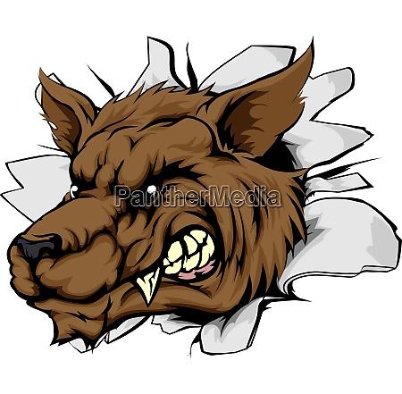wolf sport maskottchen durchbruch