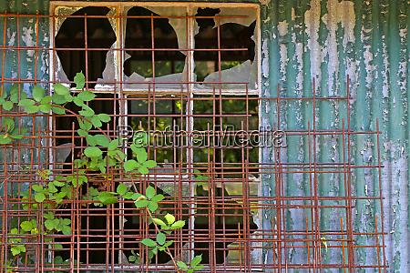 broken windows theorie