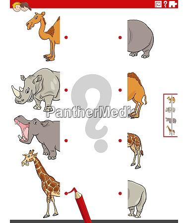 match haelften von bildern mit safari