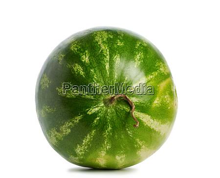 gruen gestreifte ganze runde wassermelone isoliert