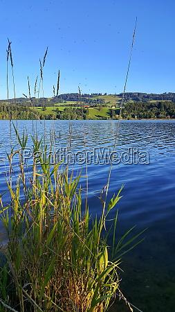 die rottachsee bei sulzberg ist ein