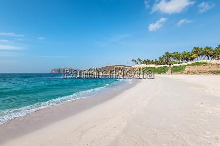 oasis beach in salalah oman arabisches