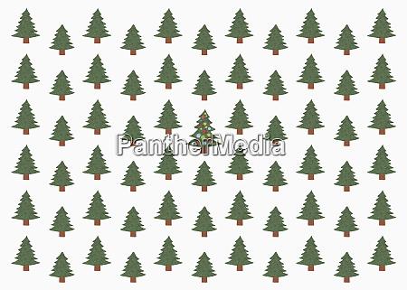 abbildung des gruenen weihnachtsbaumes im wald