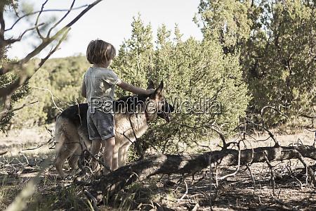 4 year old boy hiking in