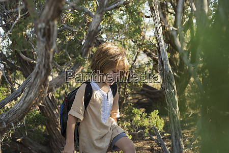 4 year old boy hiking with