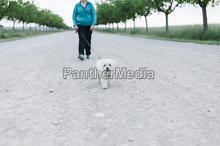 bcrop ansicht der seniorin gehen walkies