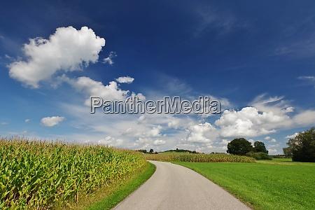 landschaft bei oberbrunn seeon chiemgau chiemsee