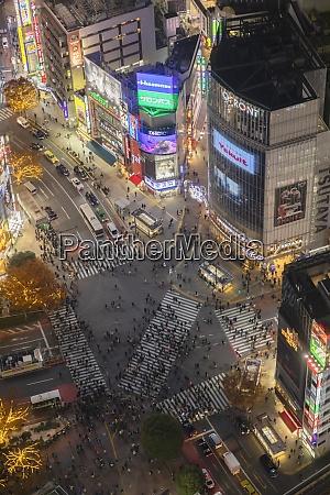 shibuya crossing bei nacht shibuya tokio