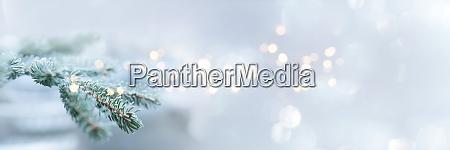 tannenzweige im winter mit festlichem bokeh