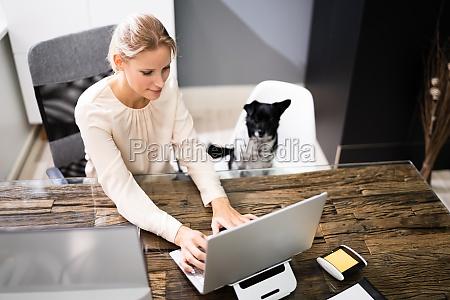 geschaeftsfrauen arbeiten auf laptop computer