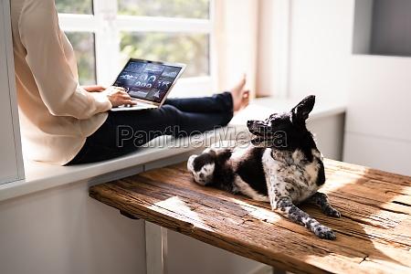 frau mit business laptop computer mit