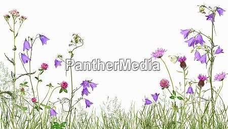 Medien-Nr. 28906430