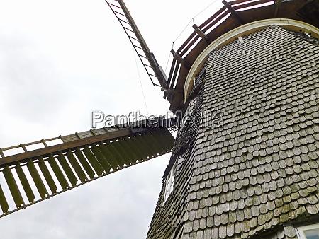 die hollaendische muehle am muehlenberg