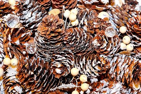pinecone textur