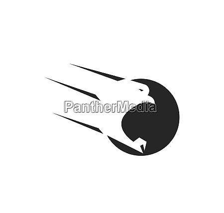 falcon eagle vogel logo vorlage vektor