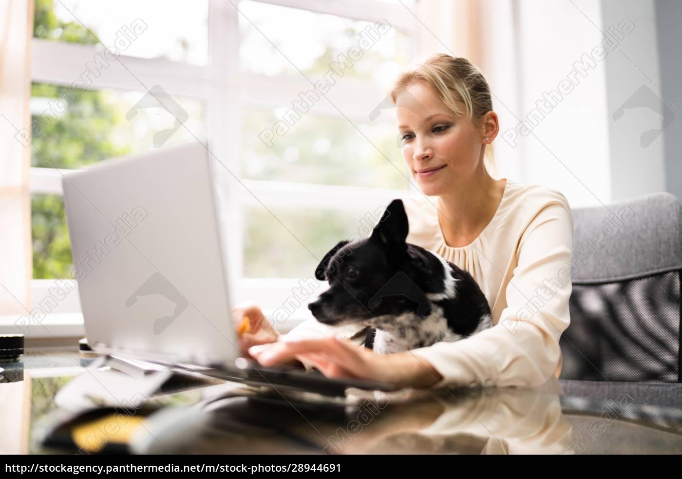 geschäftsfrauen, arbeiten, auf, laptop-computer - 28944691