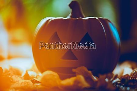 halloween kuerbis dekor