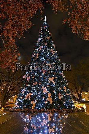weihnachtsbaum in wien OEsterreich