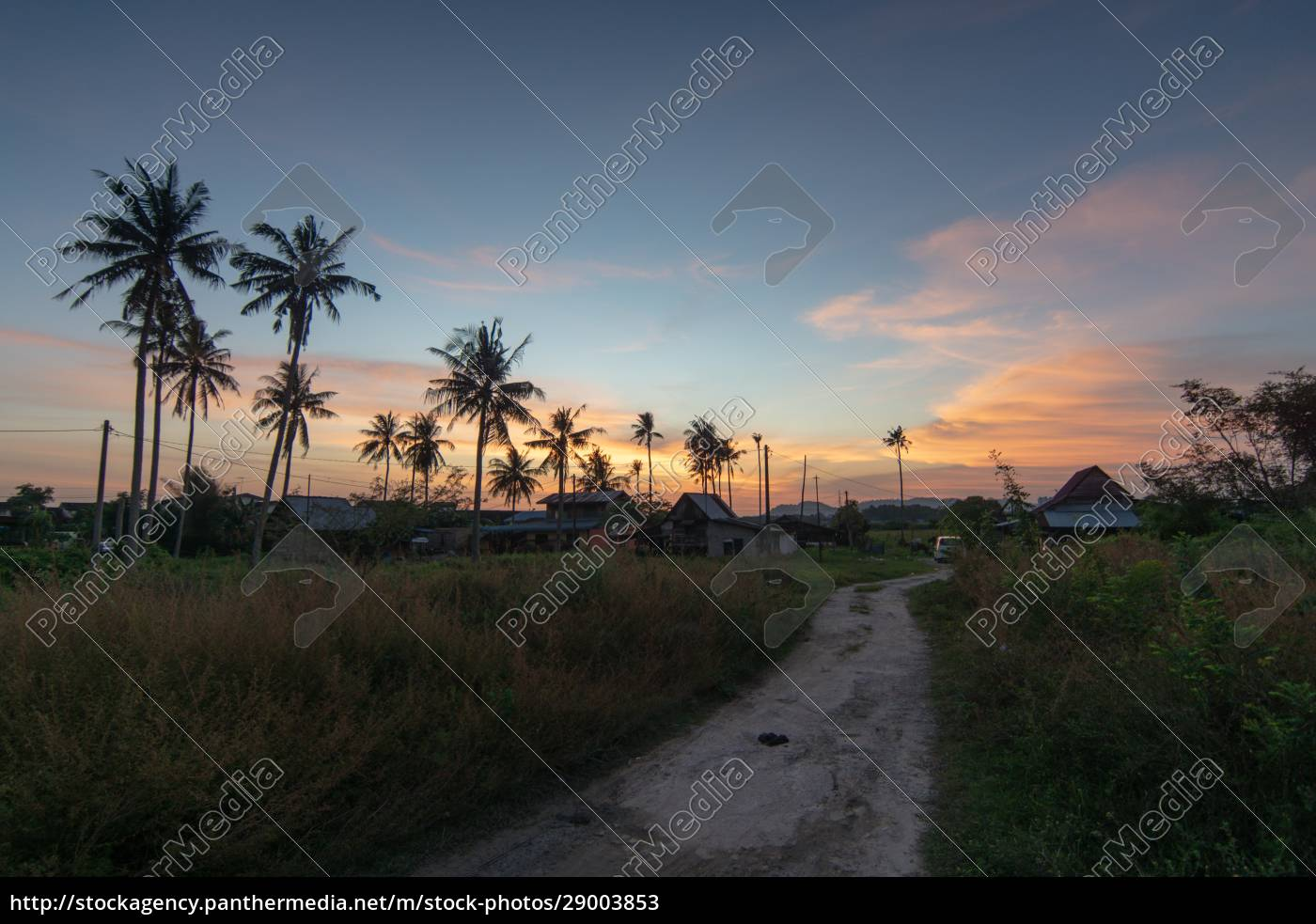 kampung, house, at, malaysia, with, surrounded - 29003853