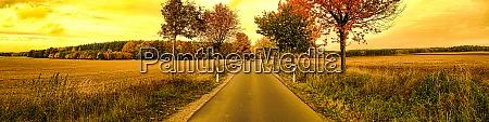 Medien-Nr. 29005236
