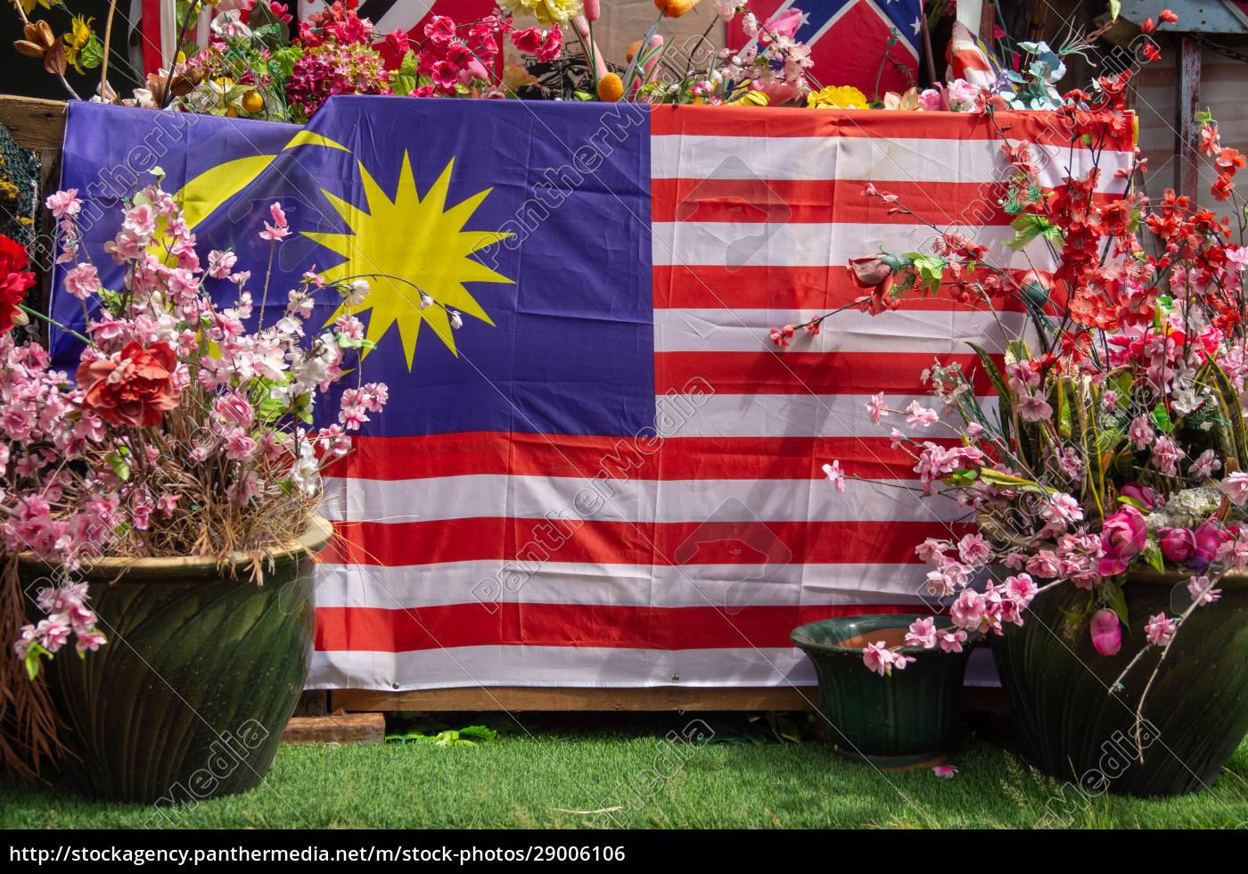 malaysia, flag, with, flower - 29006106