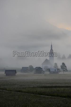 morgennebel im flusstal sava bohinjka slowenien