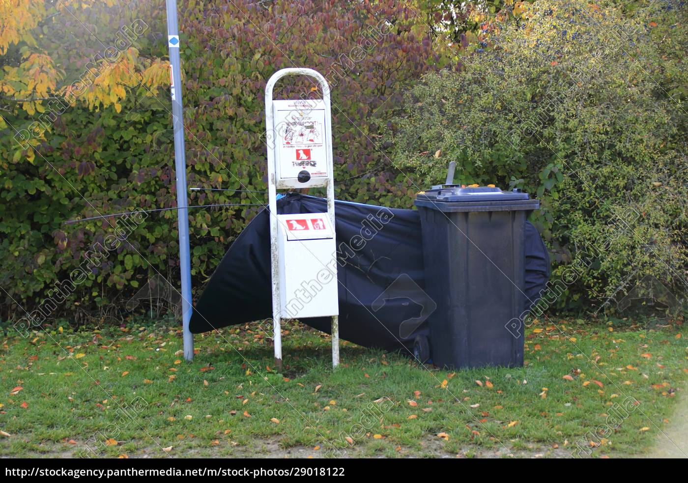 garbage, was, illegally, dumped, in, a - 29018122