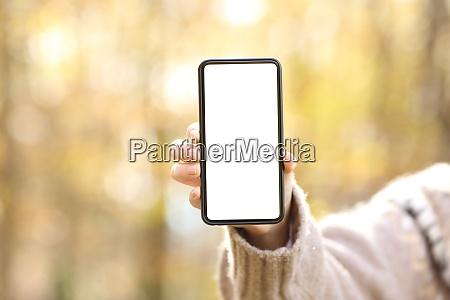 frau hand zeigt leere smartphone bildschirm