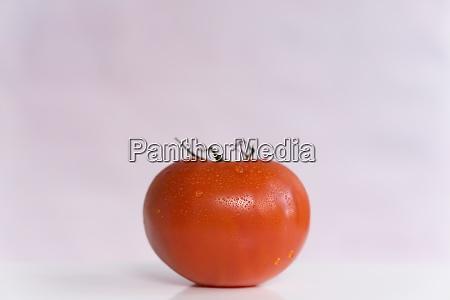 rote tomate auf weissem hintergrund