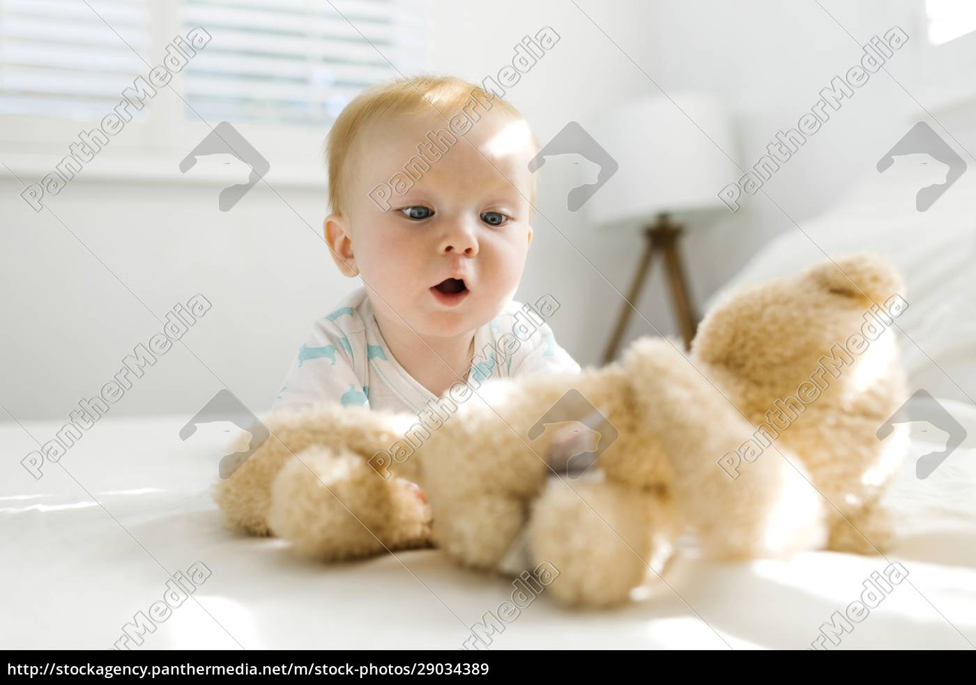 baby, boy, (6-11, months), looking, at - 29034389