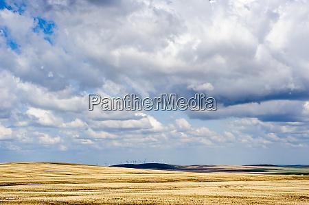 praerielandschaft mit windkraftanlagen in der ferne