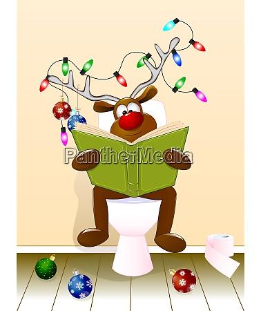 reh liest ein buch im toilettenraum
