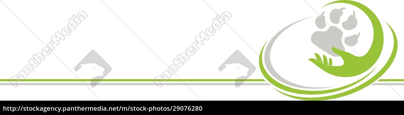 hand, pfote, hunde, tiere, hintergrund - 29076280