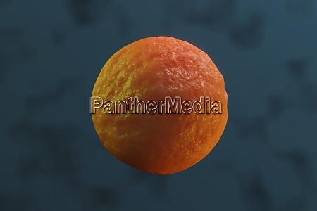 3d gerenderte illustration visualisierung einer stammzelle