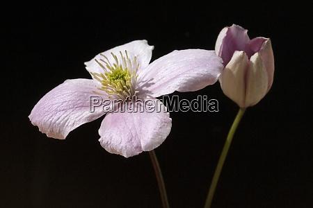 Medien-Nr. 29162011