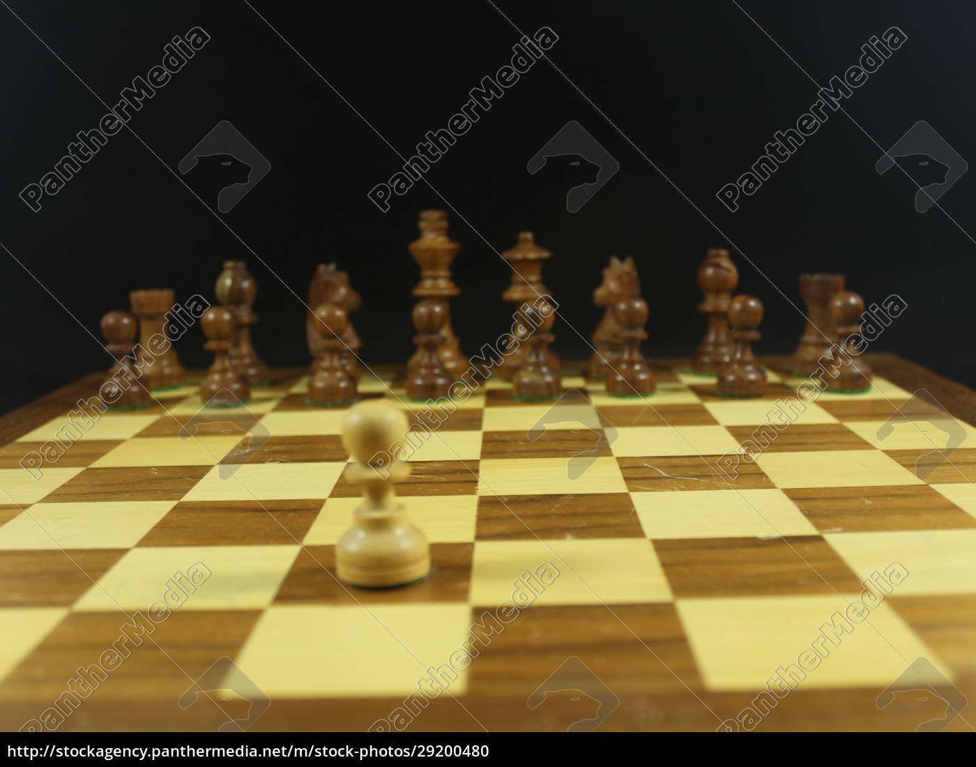 beautiful, chess, game, with, different, figures - 29200480