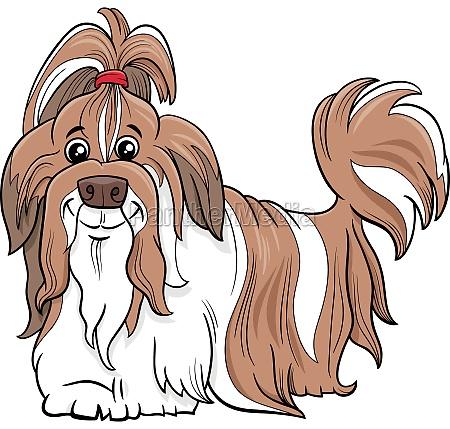 shih tzu reinrassige hund cartoon illustration