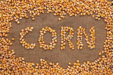 wort mais geschrieben auf sackleinen hintergrund
