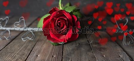 liebesherzen und rote rosen