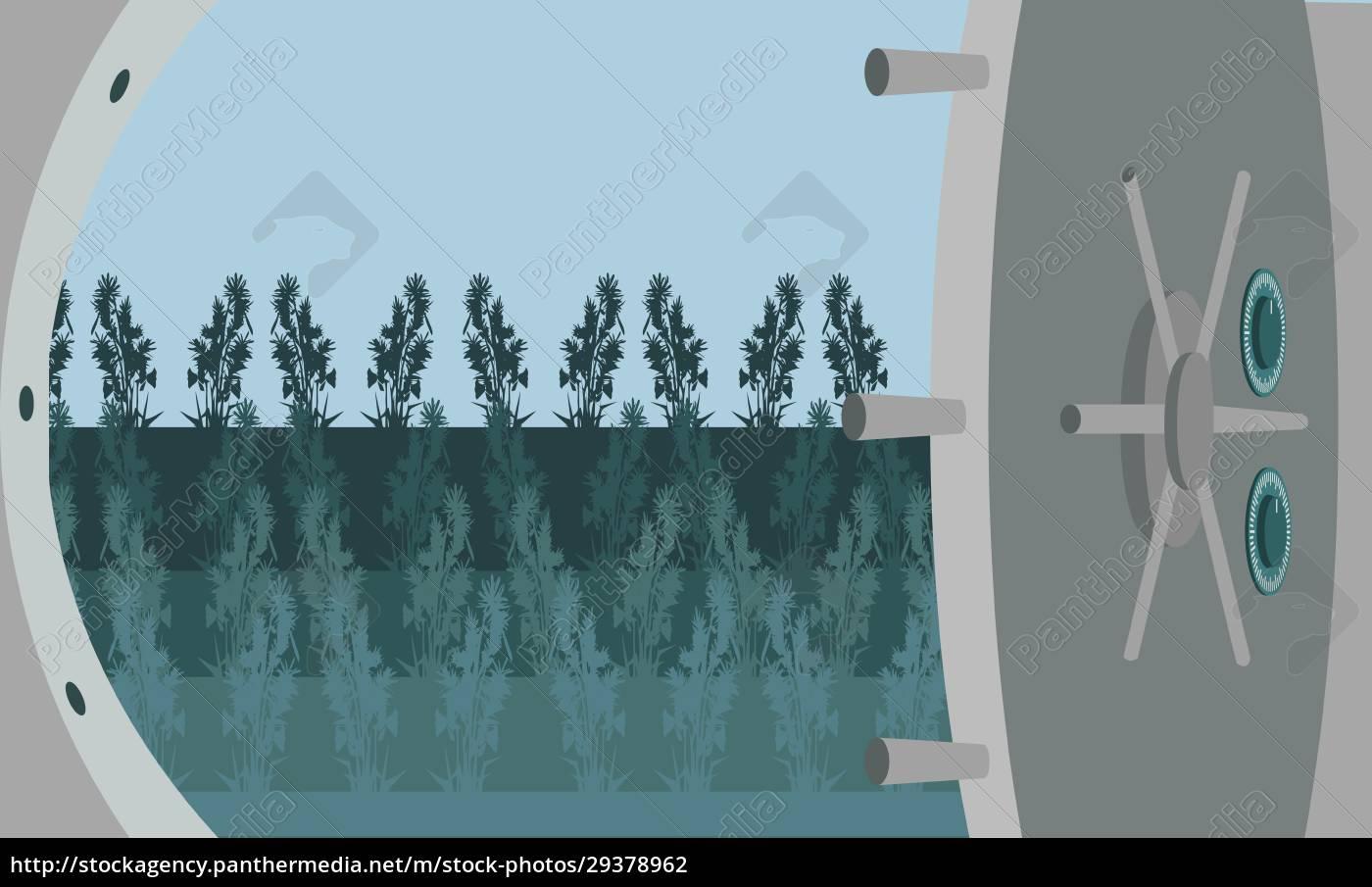 pflanzen, im, schließfach - 29378962