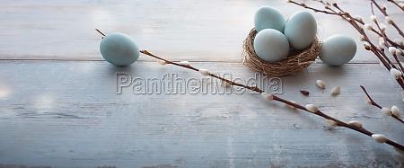 zarte blaue ostereier auf vintage planken