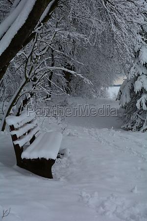 bank im winter am waldrand mit